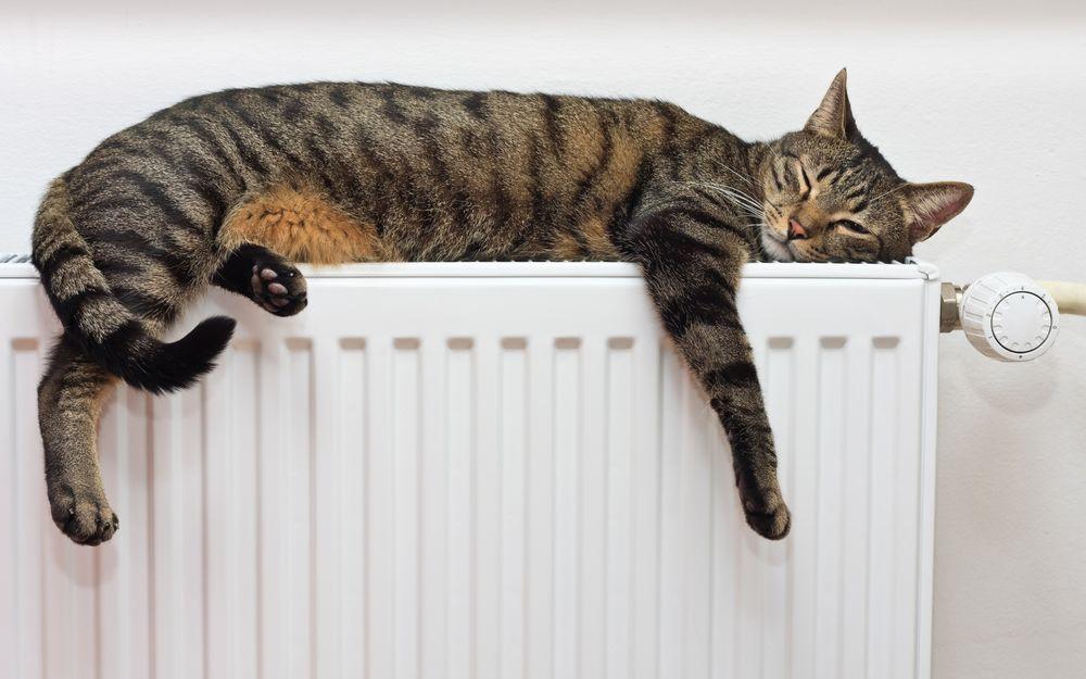 Тепло и уют с обогревателем