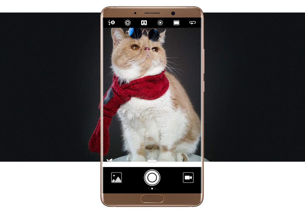 Знімки з допомогою камер Huawei Mate 10 Pro