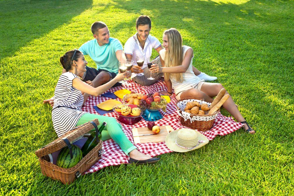 Пикник на природе с друзьями