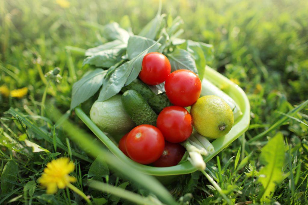 Овощи для пикника