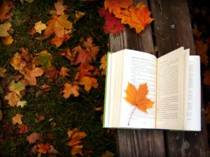 Читання книги на лавочці в парку